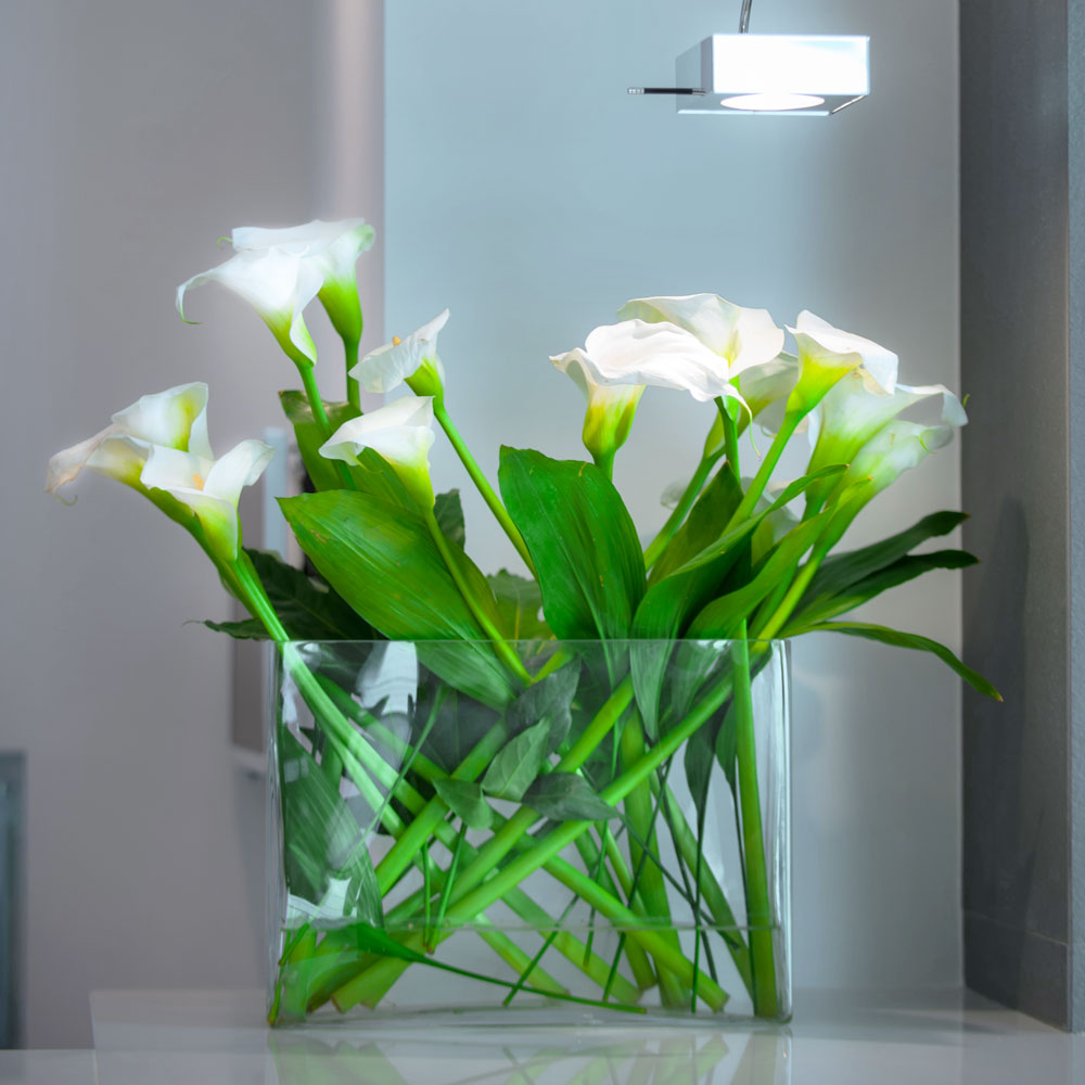 Hotel Executive Inn fiori bianchi in un vaso trasparente