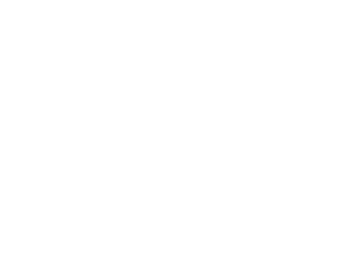 Hotel Executive Inn white logo